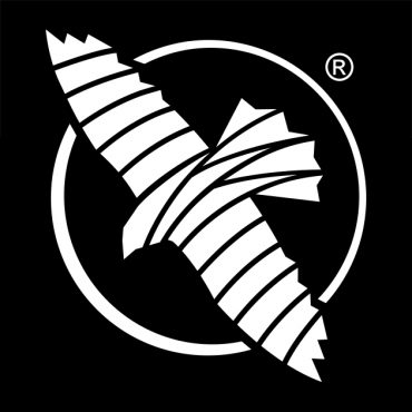Hayabusa Logo Evolution