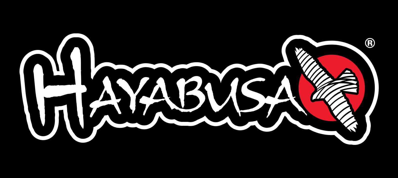 Hayabusa - Old Logo