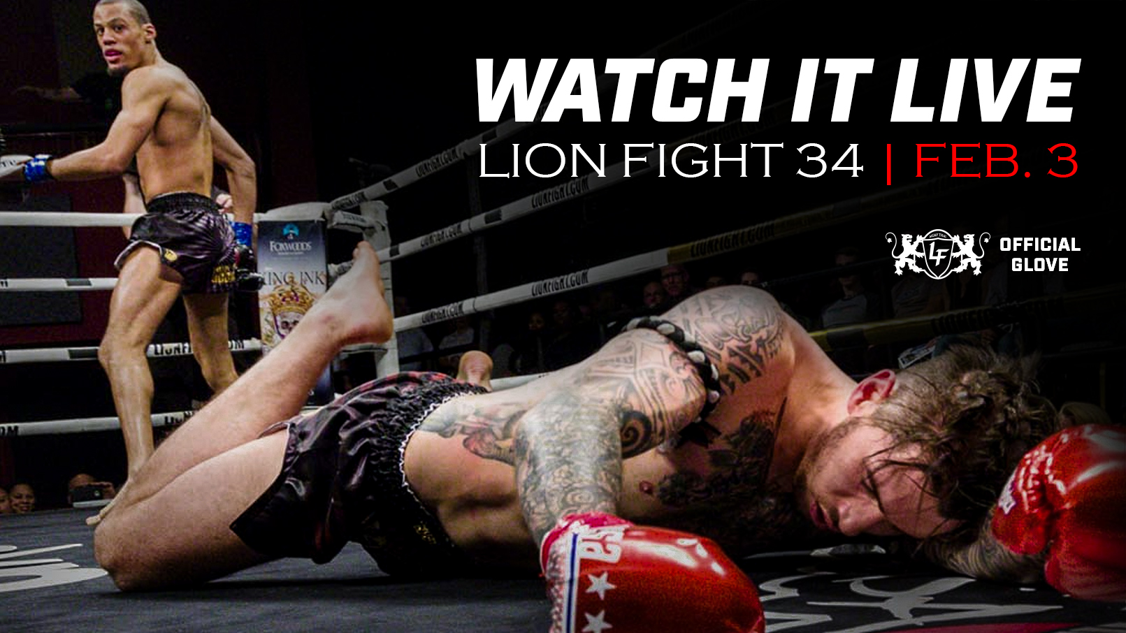Lion Fight 34 - Secondary Banner